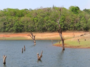 Places To Travel In South India This March