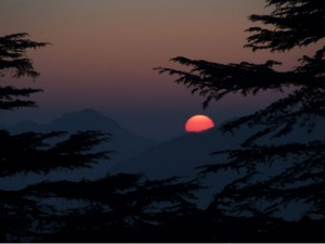 Scenic Views Of Chail 001946 Pg