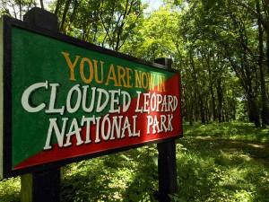 Clouded Leopard National Park Tripura