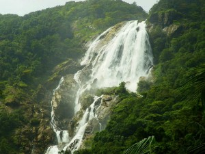 Convincing Reasons Visit Goa This Monsoon Travel