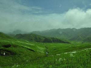 Dzukou Valley In Nagaland