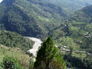 Kedarnath Wildlife Sanctuary Uttarakhand