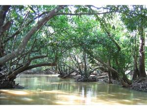Romantic Places In Kerala