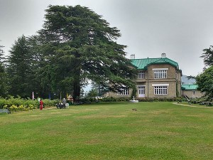 Road Trip From Delhi To Chail Weekend Getaway