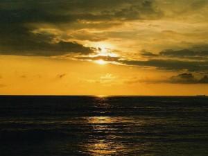 Five Places To Visit Around Panambur Beach