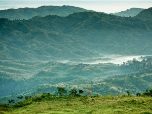 The Green Village Of Khonoma In Nagaland