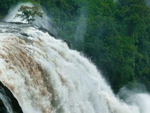 Places To Enjoy Monsoon In Kerala