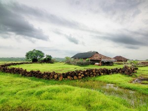 A Tranquil Getaway To Malshej Ghat From Mumbai
