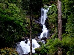 Escape To Abbey And Iruppu Falls
