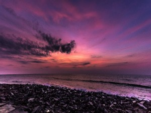 For Those Who Love A Tropical Holiday Beaches Of Pondicherry