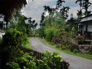 Visit Mawlynnong The Cleanest Village In Asia