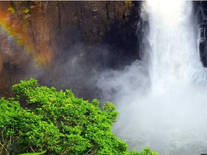 Langshiang Falls The Sparkling Beauty Of Meghalaya