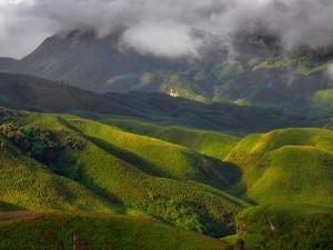 Moatsu Festival 2018 Enjoy The Beauty Of Spring In Nagaland