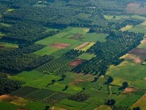 Lesser Known Hill Stations In Idukki Kerala
