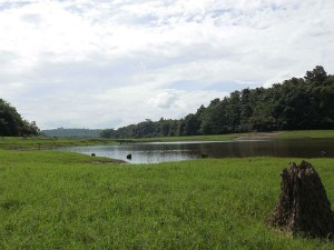 Thattekad Bird Sanctuary First Of Its Kind In Kerala