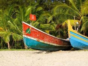 Explore The Beach Village Of Mararikulam To Witness The Magic Of Nature