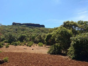 Kamalgad Fort In Maharashtra Of Trekking Trails And Caves