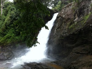 Soochipara Waterfalls In Wayanad