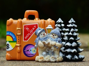 Places For Christmas Holidays In India