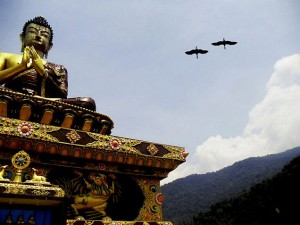 Places To Visit In Sikkim In May
