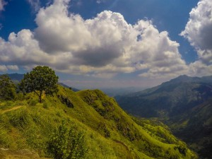 Places To Visit In Nagaland In June