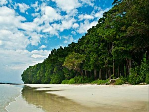 Best Places To Visit In Andaman And Nicobar Islands In July