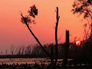 Best Places To Visit In West Bengal In August