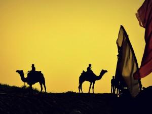 Rajasthan Ten Best Winter Destinations