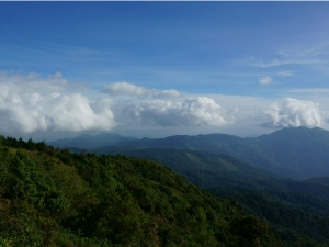 Panchalimedu In Kerala – A Small Paradise In The Making