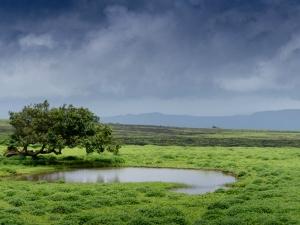 Solo Travelling Destinations In Maharashtra