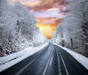 8 Winter Road Trips In India
