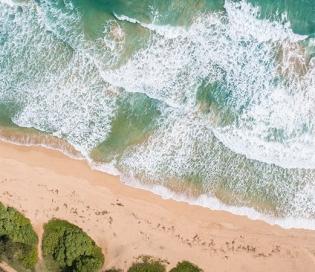Vasco Da Gama, A Palmy Beach Retreat