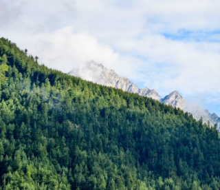 Perfect Summer Destinations To Visit In Sikkim
