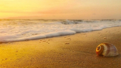 10 Best Places To Visit In Goa In April