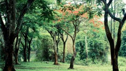 8 Phenomenal Winter Destinations In Karnataka