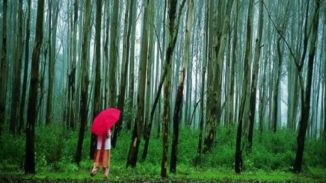 The 7 Wonders Of Madhya Pradesh