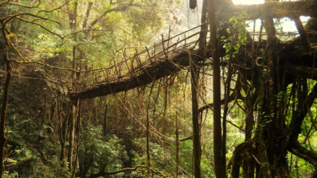 Must-See Places In Meghalaya