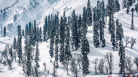 Pahalgam To Gulmarg – Paradise For Nature Lovers!