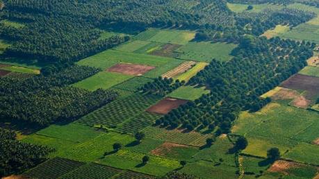 Lesser-known Hill Stations In Idukki, Kerala