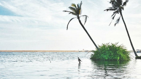 Travel To These Beautiful Weekend Getaways From Kanyakumari