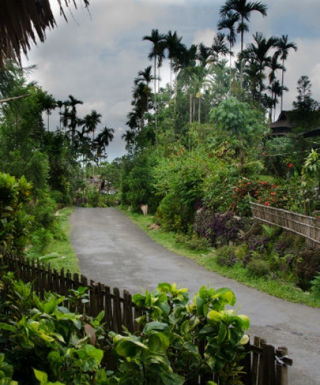Visit Mawlynnong – The Cleanest Village In Asia
