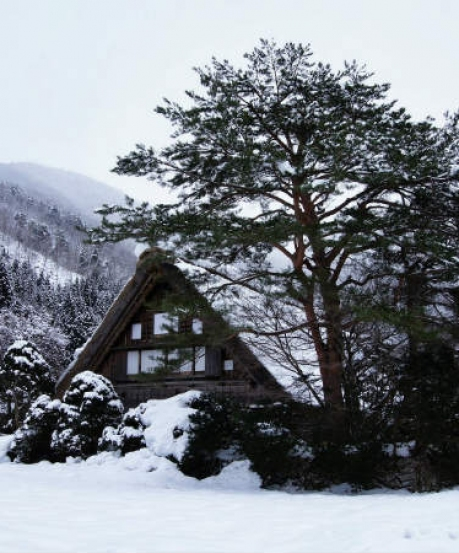 The Hamlet Of Lachen In Sikkim Is All You Need This Season