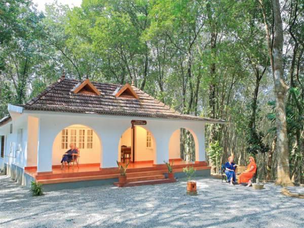 Top Jungle Resorts In Kerala