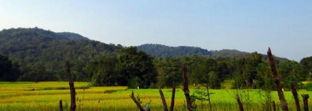 Kolkata To Duarsini – Amid Rich Forests And Wildlife