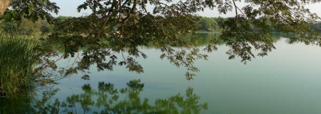 Visit These Top 5 Lakes In Mysore