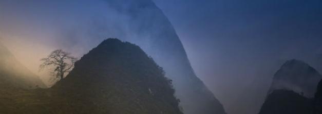 5 Reasons Javadi Hills In Tamil Nadu Must Not Be Ignored By Travellers