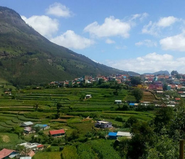 All About The Vegetable Land Of Vattavada In The Mountains Of Kerala