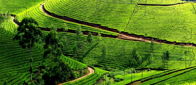 Best Places To Visit In Kerala In April 2020