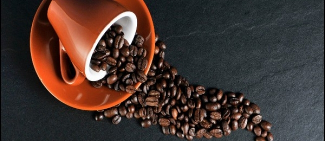 International Coffee Day 2021: 5 Coffee Plantation Places In India Every Coffee Lover Must Visit