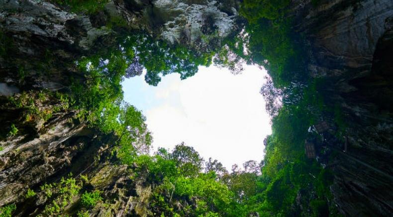 Exploring Meghalaya's Garden Of Caves